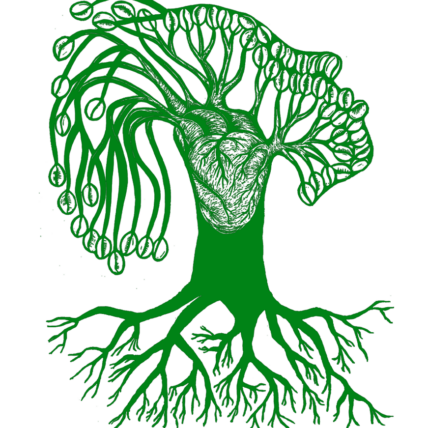 Acorn Logo: a green tree with prominent root system and seeded branches connected to a heart in the trunk