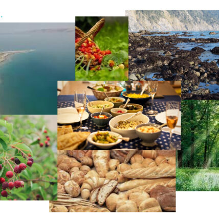 Collage of images that signify abundance. From left top to bottom right: a coastline, a basket of strawberries, a rocky base of a waterfall, a serviceberry plant, a table with dishes of food, loaves of bread, and a forest with sun peaking through the tree tops.